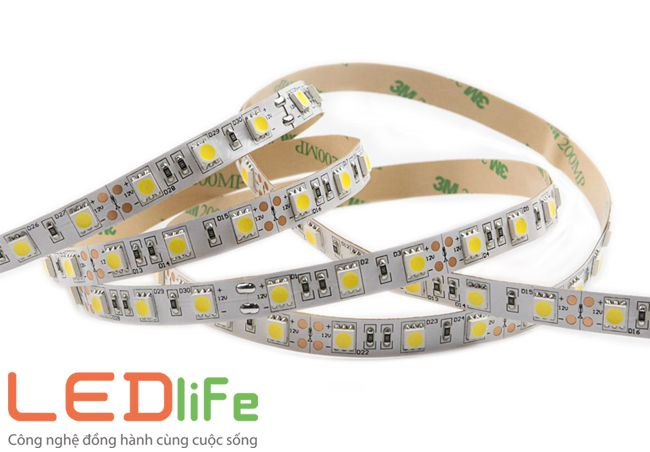 den led day 5050, đèn led dây 5050
