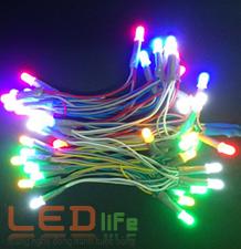 led ruoi, led day, bong led, bóng led, led dây, led ruồi